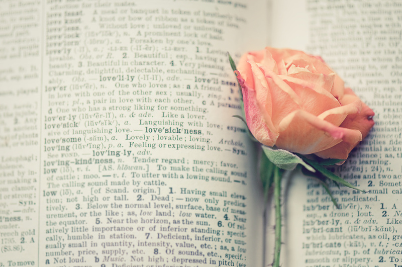 libri romanzi rosa